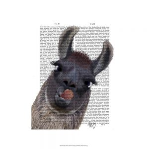 SG1628 silly llama alpaca quirky novel writing type book typography watercolour