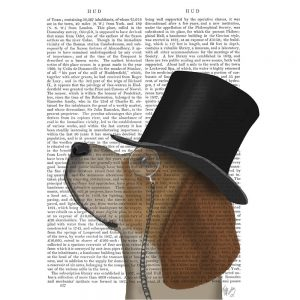 SG1641 beagle formal hound and hat