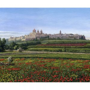 SG1737 mdina poppies malta meadow field flowers buildings architecture