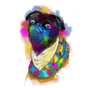 SG1838 pug dogs illustration animals colour splash watercolour digital vibrant colourful