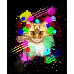 SG1853 feline cats graphic illustration vibrant colourful colour splash