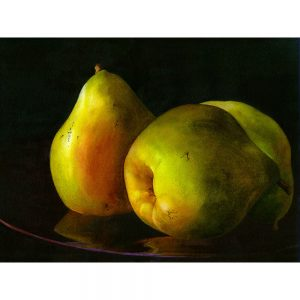 SG1867 pears still life oil paint painting fruit