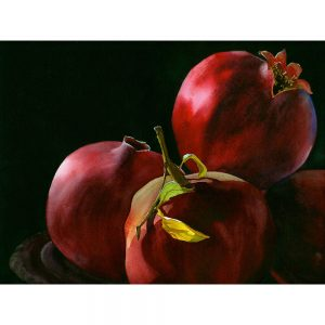 SG1868 pomegranates oil paint painting fruit seeds still life
