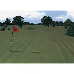 SG194 golf course landscapes trees figures flag