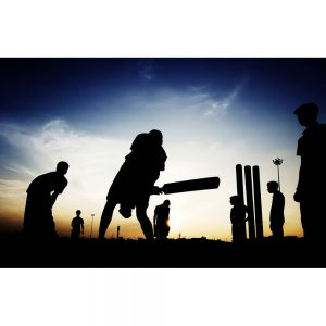 SG1979 boys playing cricket evening silhouette