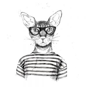 SG2070 cat glasses drawn humour
