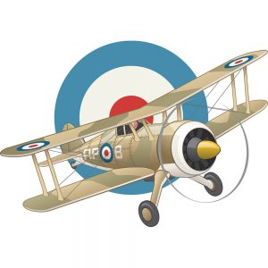 SG2332 british ww2 plane air force insignia