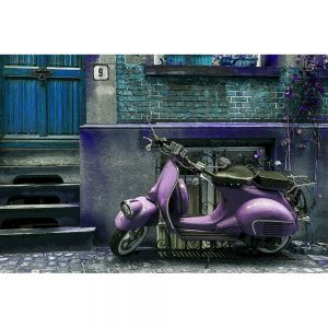 TM1472 automotive scooters street purple