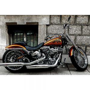 TM1501 automotive motorcycles orange