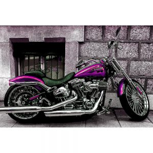 TM1503 automotive motorcycles purple