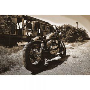 TM1514 automotive motorcycles lowrider sepia