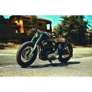 TM1515 automotive motorcycles lowrider