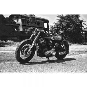 TM1516 automotive motorcycles lowrider mono