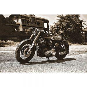 TM1517 automotive motorcycles lowrider sepia