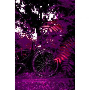 TM1553 bicycles classic purple