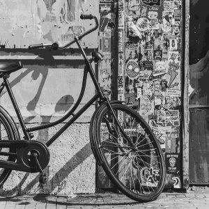 TM1562 bicycles vintage street mono