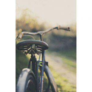 TM1564 bicycles classic saddle