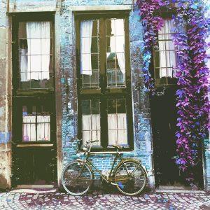 TM1569 bicycles retro house brown