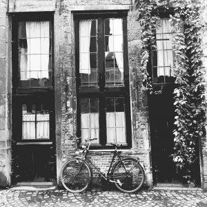 TM1570 bicycles retro house mono