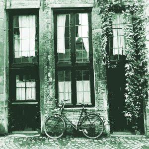 TM1571 bicycles retro house green
