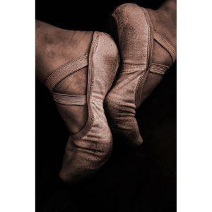 TM1717 ballet shoes brown