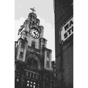 TM2753 liver building liverpool mono