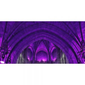 TM2764 liverpool catherdral interior purple
