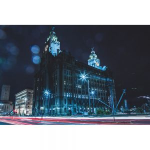 TM2771 liver birds liverpool night