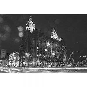 TM2773 liver birds liverpool night mono