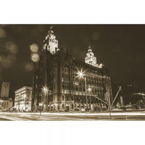 TM2774 liver birds liverpool night sepia