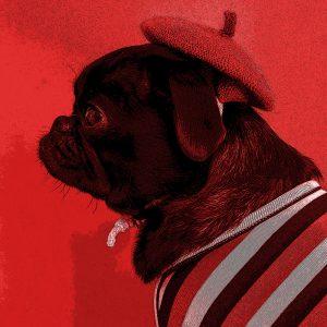 TM2853 dog hat coat bright red