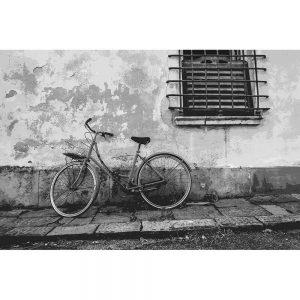 TM2856 retro bicycle bike old20building mono
