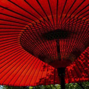 TM2863 large canopy umbrella red