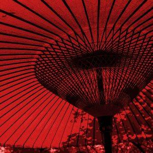TM2865 large canopy umbrella bright red