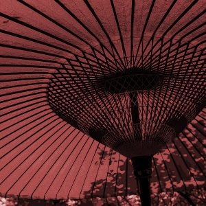 TM2866 large canopy umbrella light red