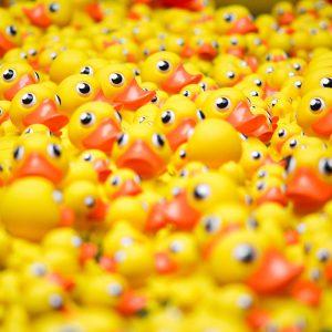 TM2953 yellow plastic ducks