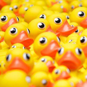 TM2954 yellow plastic ducks detail