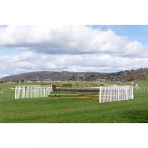 SG3071 horse jump race course cheltenham england