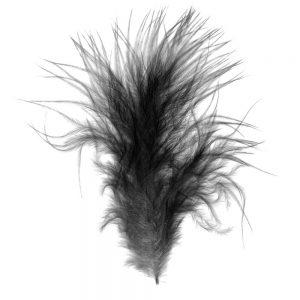 SG3253 black bird feather