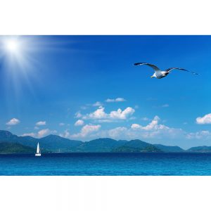 SG3269 coastal view seagull sea